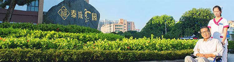 广东泰成养老网